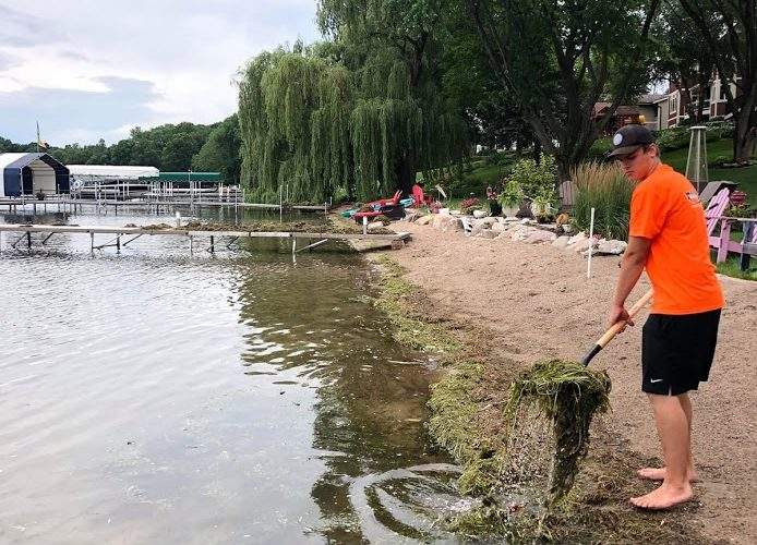 Aquatic Weed Removal & Beach Maintenance